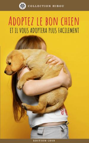 Guide pour adopter un chien