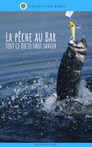 Techniques de pêche du Bar